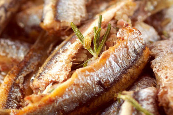 Gourmet  Mediterranean Sardines With Rosemary Packing